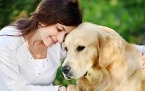 Girl and golden retriever outdoor