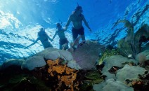 snorkelling-marseille